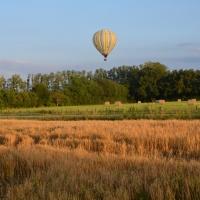 Champs et montgolfière