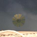 Reflet de la montgolfière dans l'eau